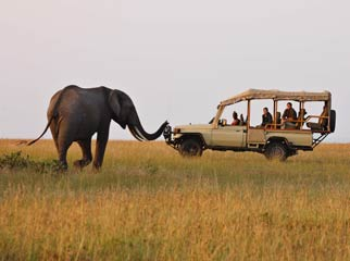 Africa's Famous Places - on safari in the Masai Mara