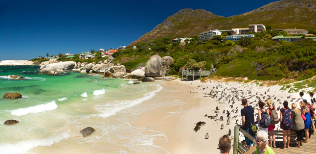 Cape Town's Best Beaches - boardwalks overlooking Boulder's Beach