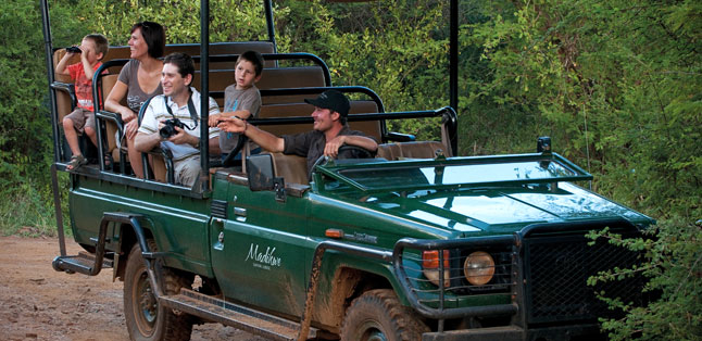 East vs Southern Africa Safaris - family-friendly malaria-free safaris at Madikwe