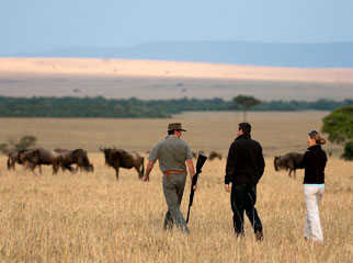 How the Migration Works - a guided walk in the Serengeti