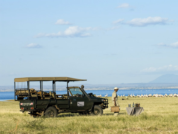 Luxury Migration, Lake & Crater Safari - Morning game drives