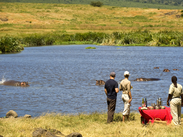 Luxury Migration, Lake & Crater Safari - Crater floor game viewing