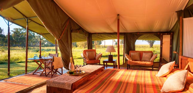 Kenya Safari Guide - luxury tented camps await