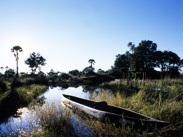 Thrilling Botswana Safari - Traditional canoe safari