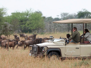 Tanzania in One Country - discover the wilderness with game drives & guided walks