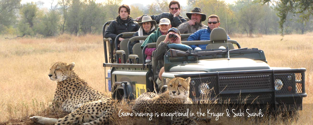 Top Tips - ensure your safari includes a variety of activities, like game drives & guided walks