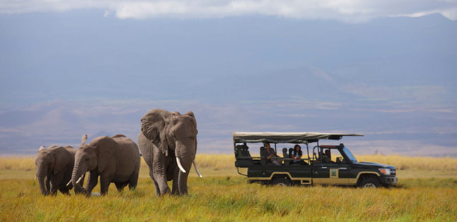 Where to Safari - Tortilis Camp in Amboseli offers amazing views of Kilimanjaro and fantastic game viewing