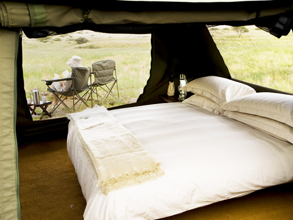 Classic Botswana Explorer - Luxurious tents