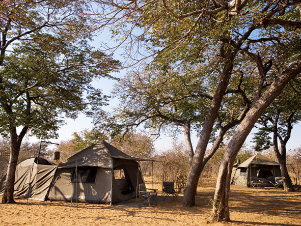 Classic Botswana Explorer - Spaciously placed tents