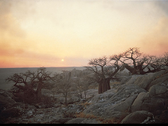 Remote & virtually unvisited Kubu Island in the Makgadikgadi Pans is one of Botswana's most evocative & haunting spots.