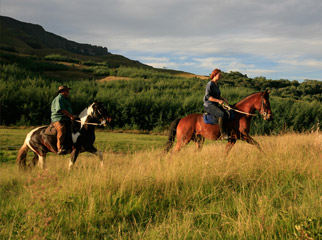 Visiting South Africa - From horse riding to abseling, there's plenty of activities to keep everyone busy