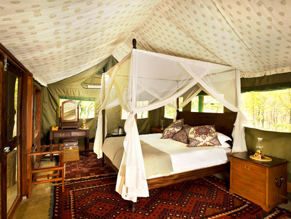 Zungulila Bush Camp - Luxurious rooms