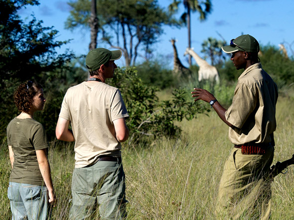 Little Tubu - Guided walking safaris