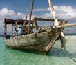 Dhows of Zanzibar