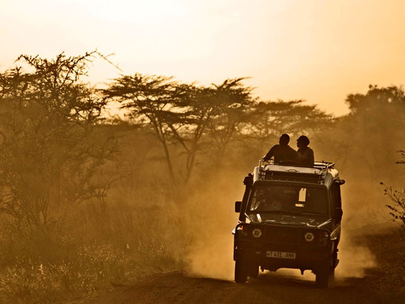 Kirawira Luxury Tented Camp - Full-day game drives