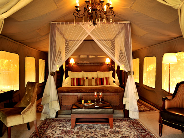 Selous Luxury Camp - Luxurious tented suites