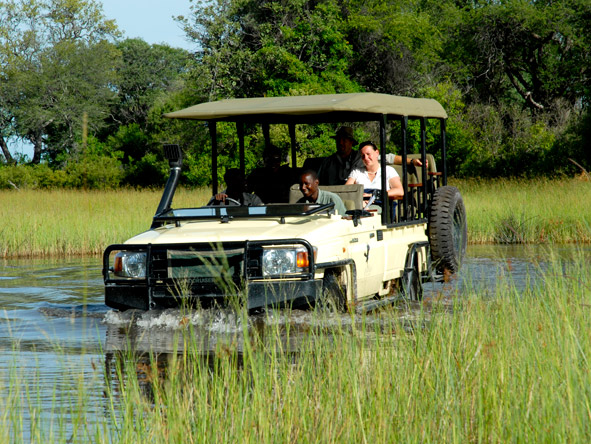 Baines' Camp - Day & night game drives