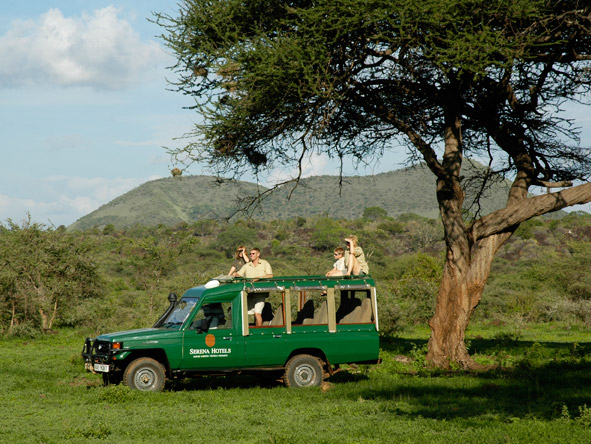 Kilaguni Serena Safari Lodge - Big game sightings