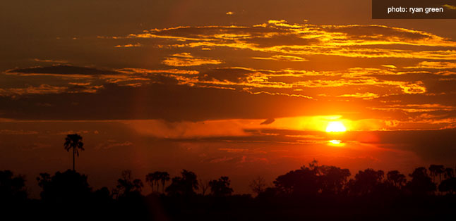 A Green Season Safari Guide - Botswana sunset