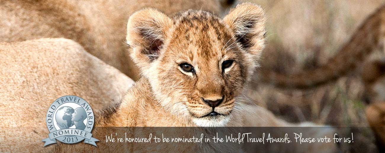 2013 World Travel Awards