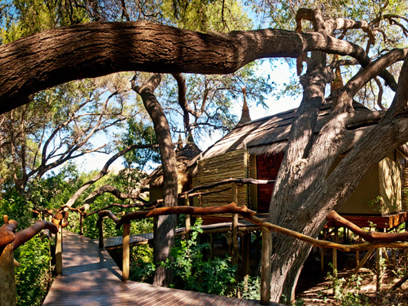 Serra Cafema Camp - Tree-shaded suites