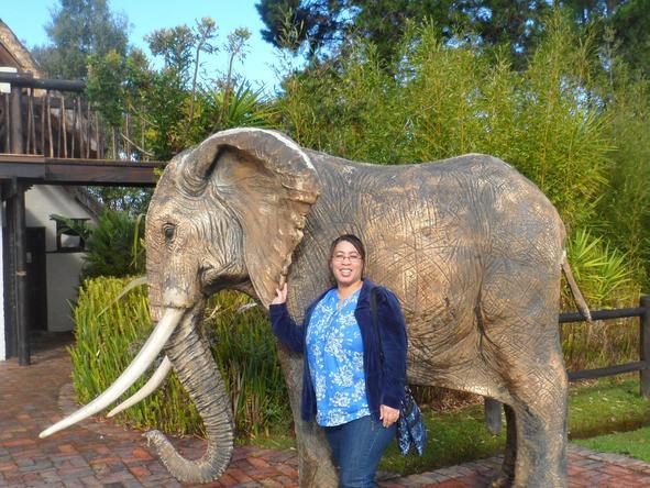 Candice Eseme - Africa Safari Expert