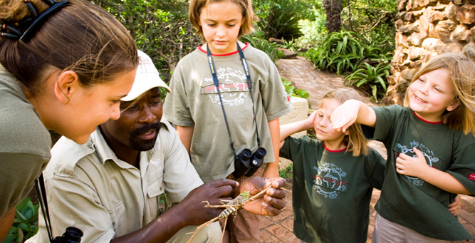 Children will soak up the experiences and information the rangers offer, including touching creepy-crawlies!