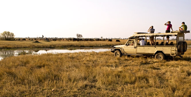 Botswana is the perfect wilderness destination for adventurous families - and ideal for children from 10 and up.