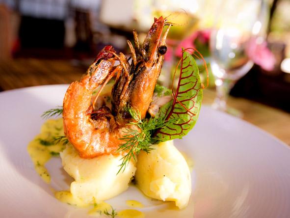 Machweo - Four-course meals