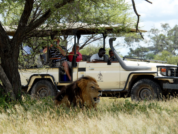 Exclusive Botswana Luxury Safari - Game viewing