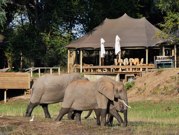 Zambia's Mana Pools and Zimbabwe's Kafue
