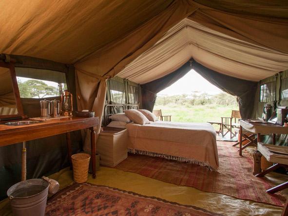 Serengeti Safari Camp - Spacious tents