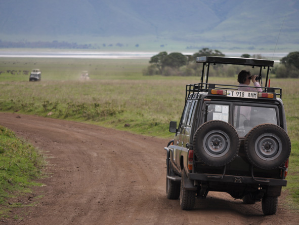 Tanzania Family Adventure - Full-day game viewing