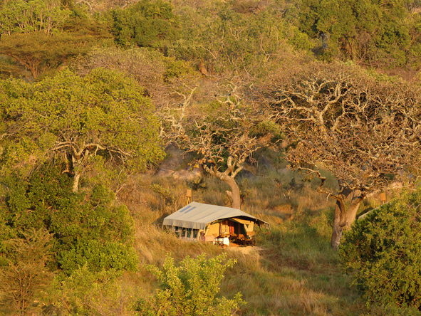 Tanzania Family Adventure - Traditional tented camps