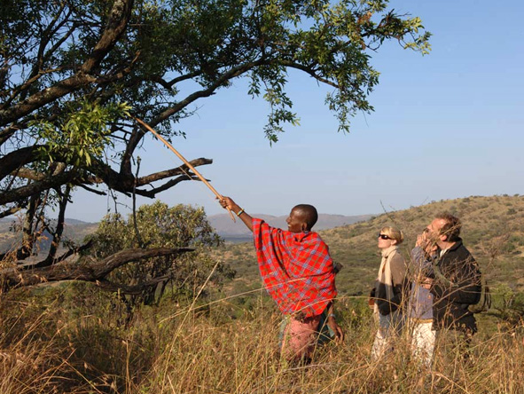 Tanzania Family Adventure - Walking safaris