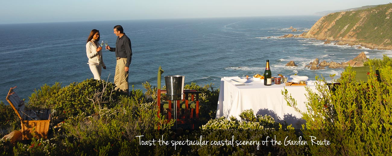 A Garden Route Road Trip - spectacular coastal scenery