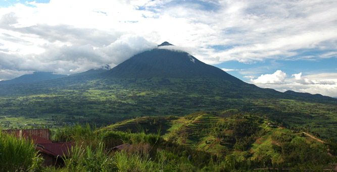 Gorilla Trekking 101 - The Virunga Volcanoes in Rwanda