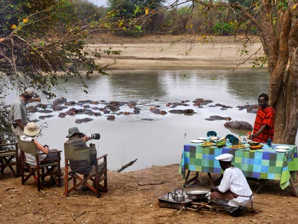 Mwaleshi Bush Camp - Bush lunches