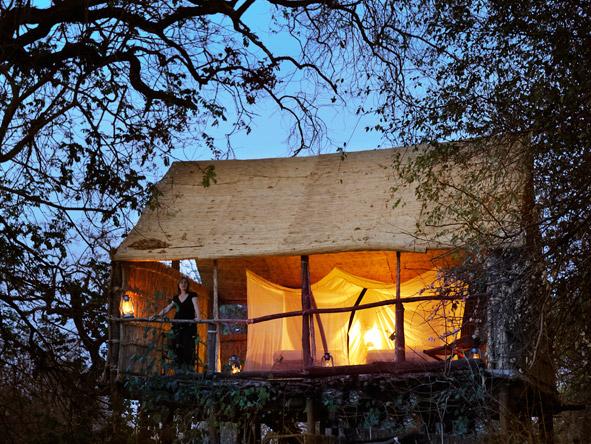 Chikoko Tree Camp - Raised chalets