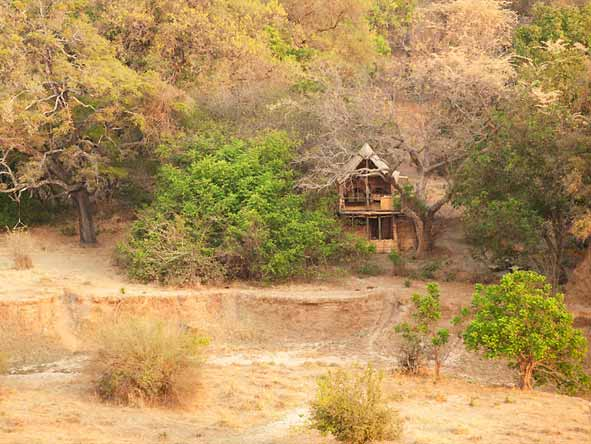 Chikoko Tree Camp - Rustic bush camp