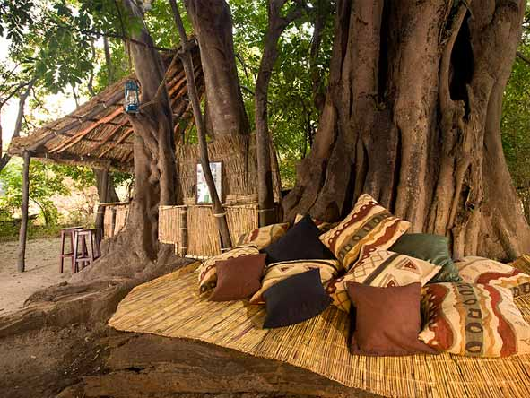 Chikoko Tree Camp - Comfortable lounge
