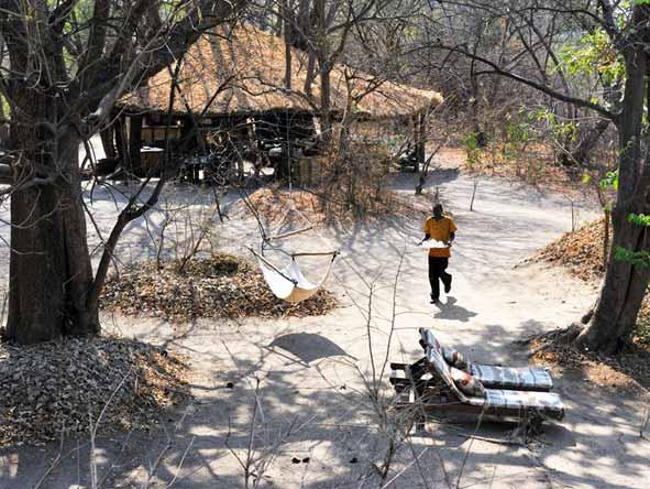 Chikoko Tree Camp - Personalised service