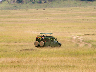 Kenya Travel Diary - a classic sight in the Mara