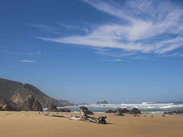 The beautiful beaches of nearby Keurboomstrand make a summer holiday to Plettenberg Bay a welcome one.