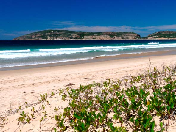 Robberg Beach is a favourite; enjoy long walks from the Beacon Isle hotel all the way to Robberg Nature Reserve.
