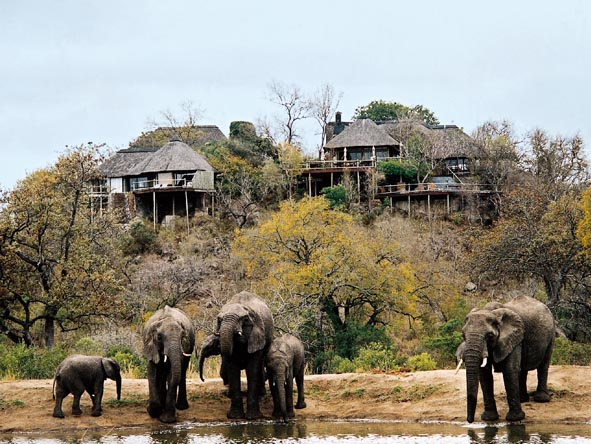 Many lodges overlook a waterhole or two; here you can enjoy first-rate elephant sightings from the comfort of your own deck!