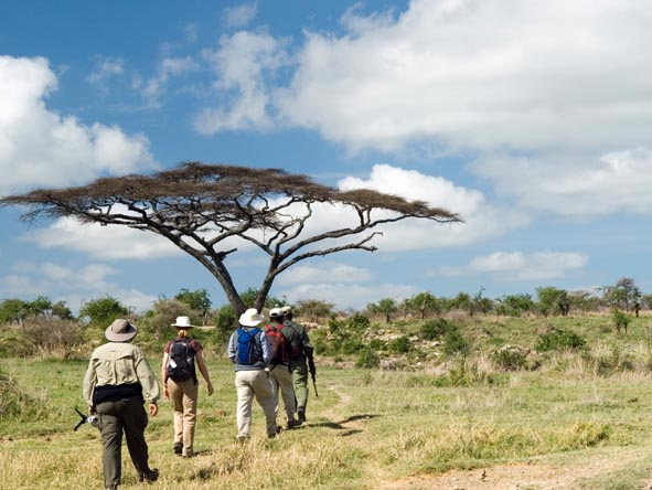 An armed guide takes a group of safari enthusiasts on a guided walk in the reserve.