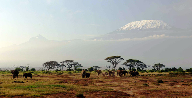 How to Hike Africa's Iconic Mountains - Mount Kilimanjaro stands tall and proud as it looms over Amboseli National Park in neighbouring Kenya.