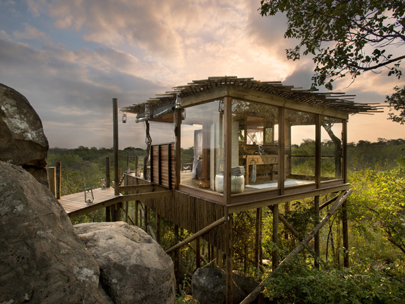 Lion Sands Narina Lodge - Tree house living