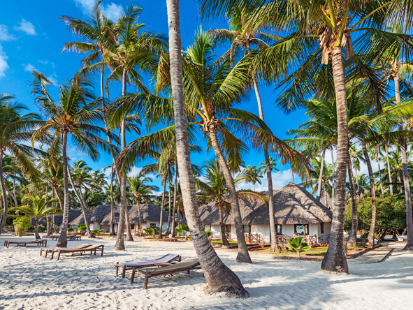 Mapenzi Beach Club - Palm tree strewn beaches
